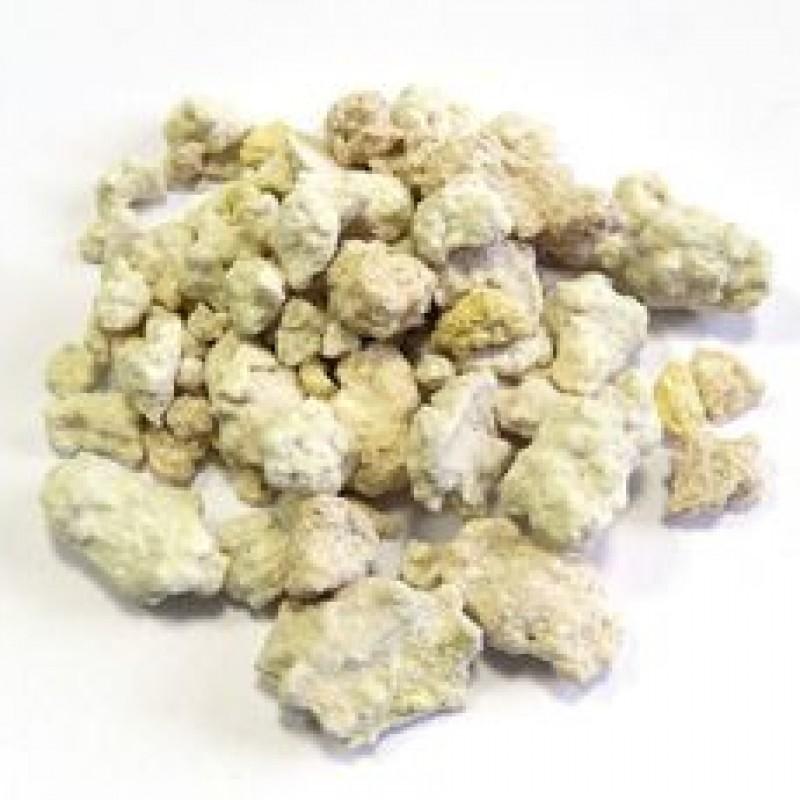 Каменное масло (Бракшун) с чагой. (10 грамм)