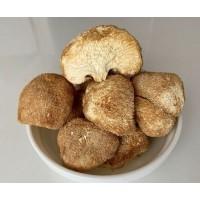 Гриб ежевик (ежовик) гребенчатый в капсулах. (63 капсулы по 300 мг.)