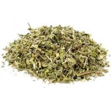 Дамиана листья - Тёрнера раскидистая (лат. Turnera diffusa)