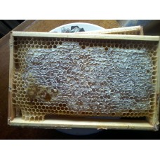 Мед в сотах, 1,5 кг
